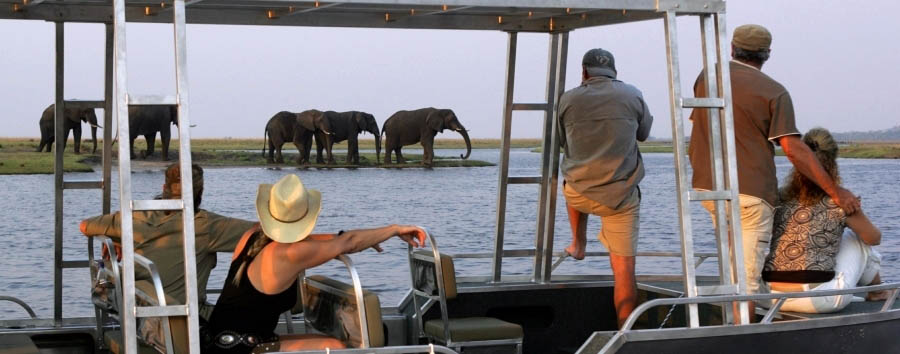 Zambezi Queen - Boat safari