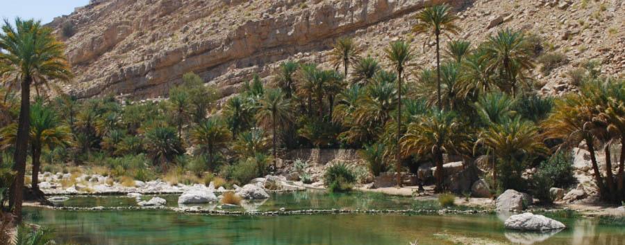 L'antica costa dei pirati - Oman Wadi Bani Khalid