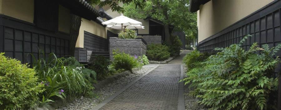 Le scimmie delle nevi - Japan Obuse, Chestnut Path