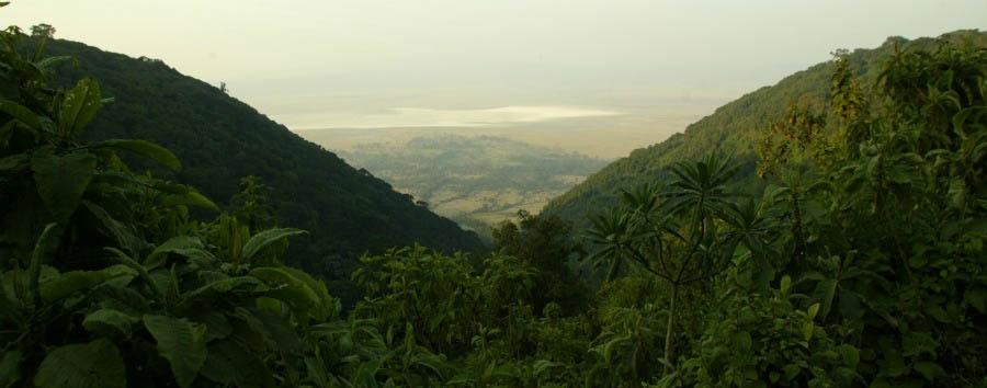 Tanzania al top - Tanzania Serengeti National Park View