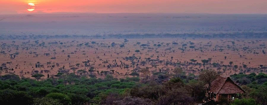 Serengeti Pioneer Camp - Panoramic view