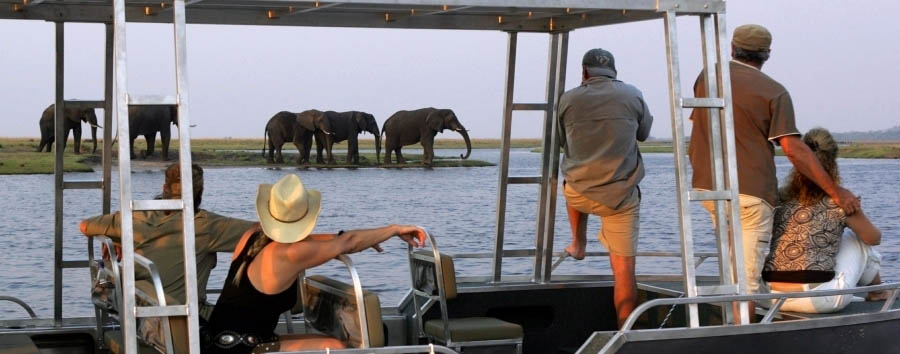 Botswana, Zambezi Queen - Botswana Zambezi Queen, Game Viewing on The Tender Boat