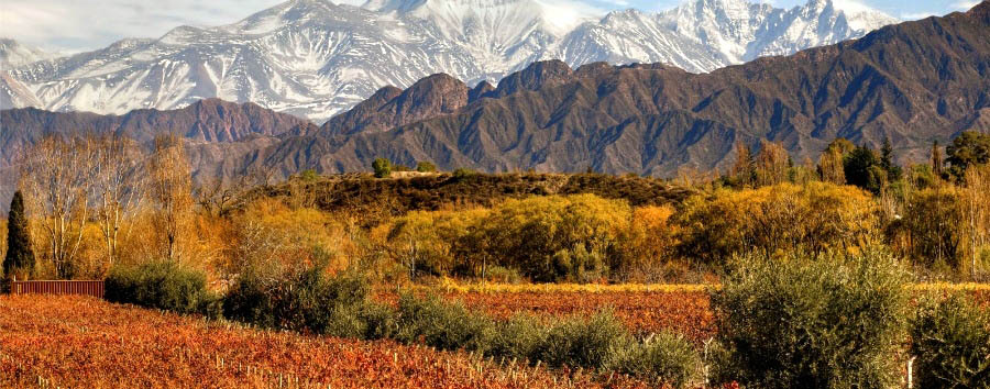 Design Your Wine - Argentina Amazing View from Entre Cielos