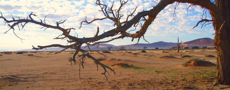 Orizzonti namibiani - Namibia Kalahari Desert