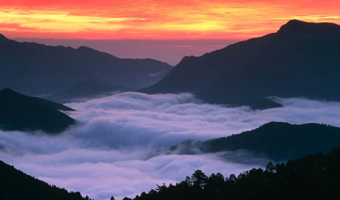 Japan - A field of clouds, Kumano