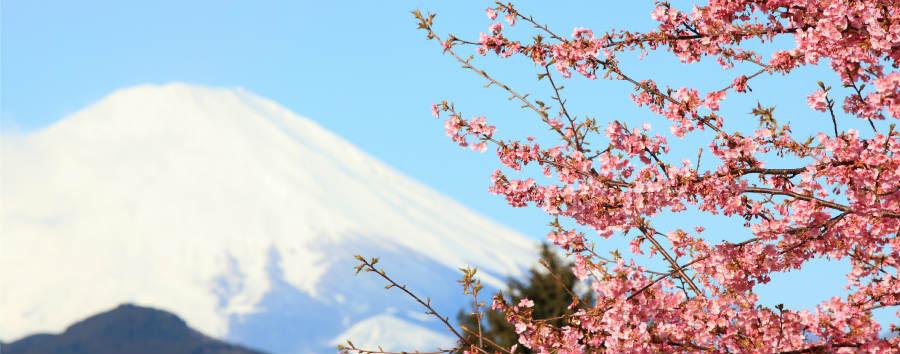 Gran Tour del Giappone - Japan Mt. Fuji,Hakone