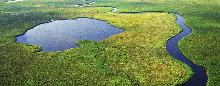 Best of Botswana - Botswana Okavango Delta, Aerial View