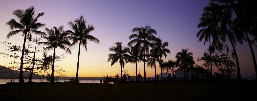 Mosaico australiano: Cairns - Australia Queensland, Sunset in Daintree National Park © Maxime Coquard/Tourism Australia