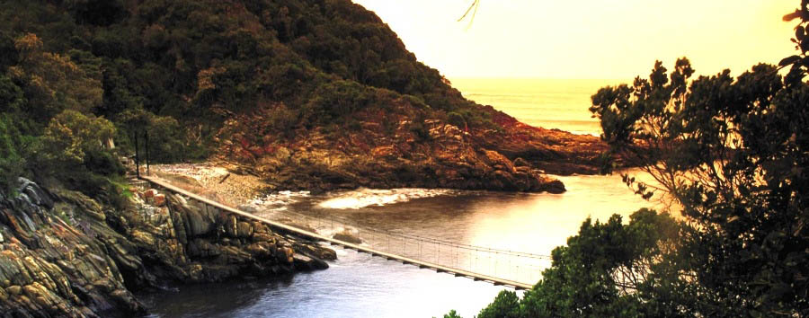 Garden Route Classic - South Africa Tsitsikamma National Park - Suspended Bridge over the Storms River