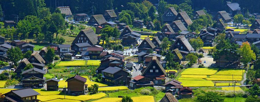 Fra Tradizione e Modernità - Japan Shirakawago Village Aerial View
