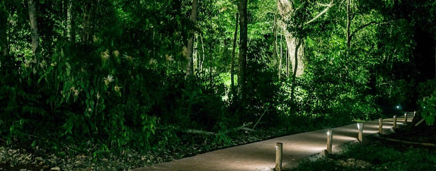 Village Cataratas Hotel - Path into the forest