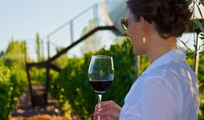 Entre Cielos, Wine Tasting - Argentina