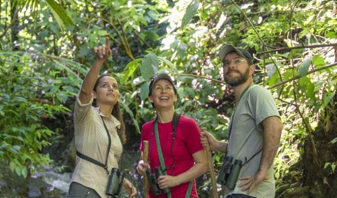 Guided Nature Tour in The Lapa Rios Private Reserve - Costa Rica