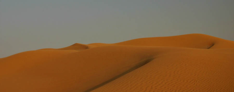 Dubai, la città del futuro - Dubai Desert dunes