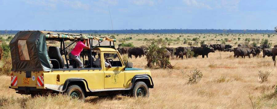 Satao Camp - Game drive