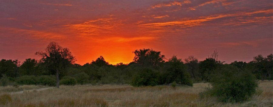 Vintage Botswana - Botswana Beautiful African Sunset