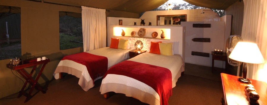 Elephant Valley Lodge - Luxury Tent with twin beds