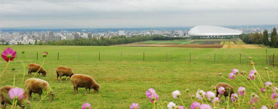 Sapporo City Break - Japan Sapporo, Hitsujigaoka Observation Hill