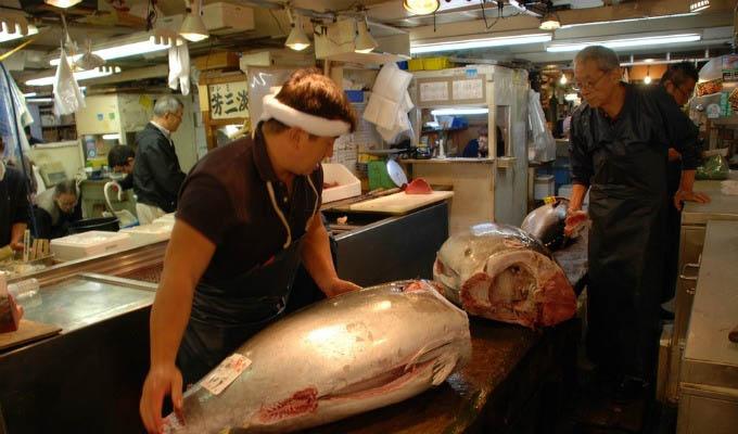 Tokyo, Tsukiji Fish Market - Japan
