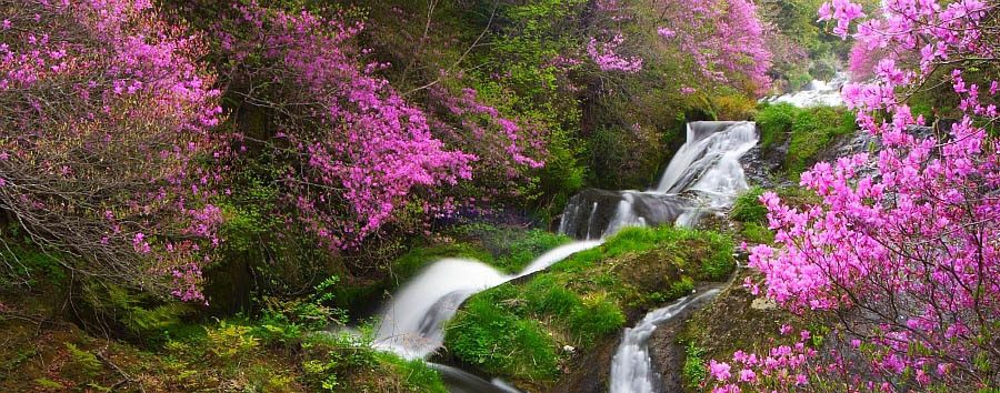 Beautiful Tohoku - Japan Beautiful Waterfalls in Nikko