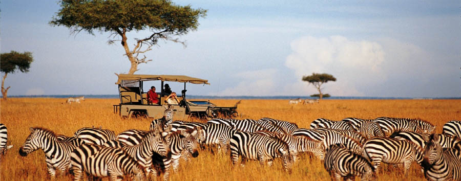 Saruni Mara - Safari through the plains