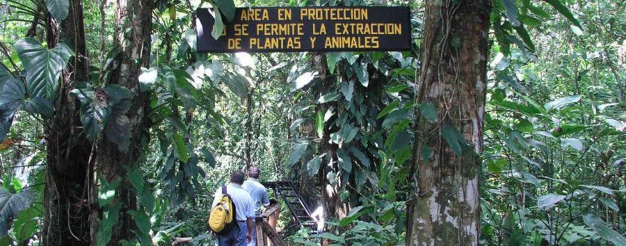 Costa Rica Green Magic - Costa Rica Nature Excursion in The Tortuguero National Park