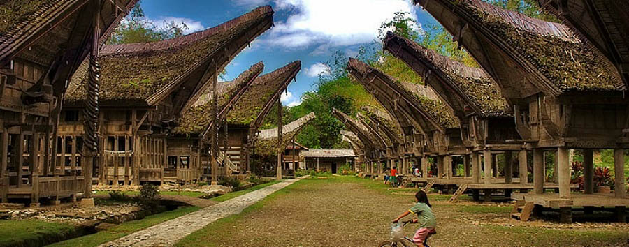 Indonesia - Tana Toraja Houses