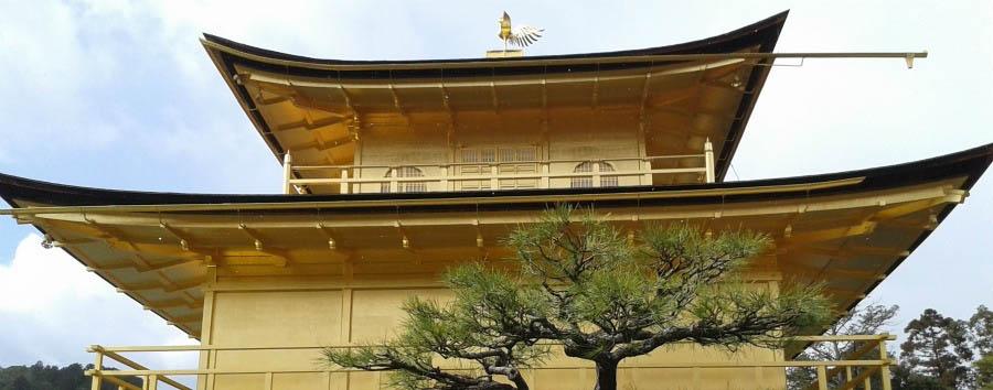 Kyoto, la Firenze d'Oriente - Japan Kyoto, Kinkaku-ju Temple