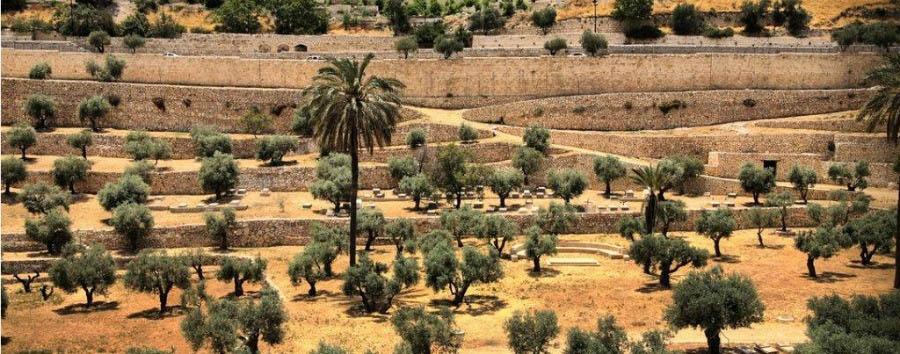 Jerusalem City Break - Israel, Jerusalem Gate of Mercy, Mount of Olives
