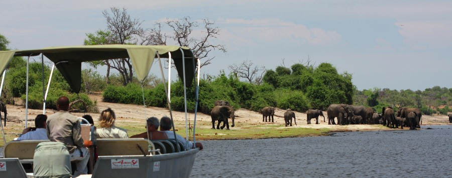 Elephant Valley Lodge - Boat safari on the Chobe River