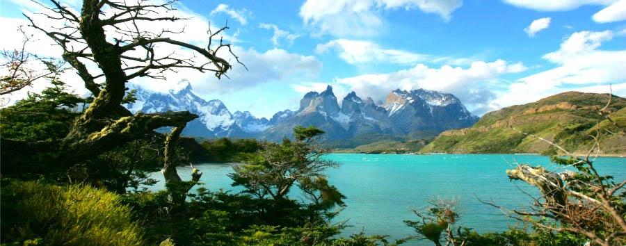 Torri di granito e faggi australi - Chile Torres del Paine - Lago Pehoe