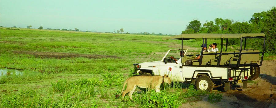 Okavango & Wildlife Adventure - Botswana Game Drive in Chobe National Park