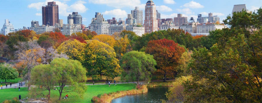 Scintillante New York - New York Central Park panorama in Autumn  © Songquan De/Shutterstock