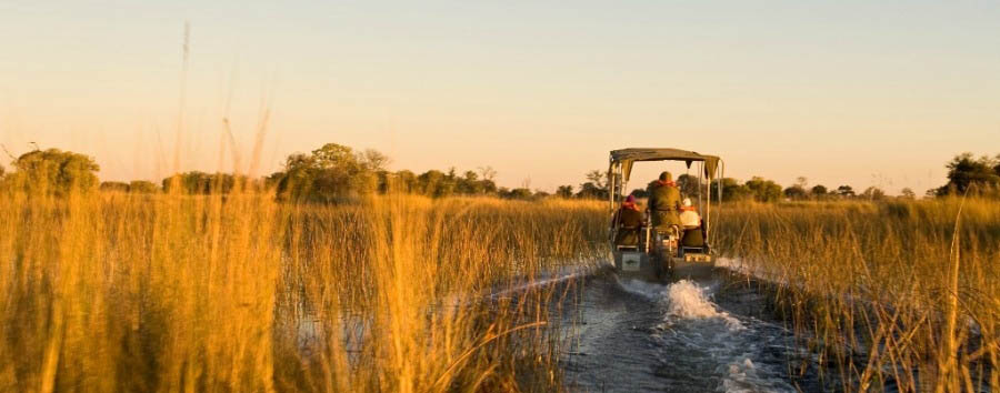 Camp+Okavango+-+Boat+Excursion+on+the+Delta