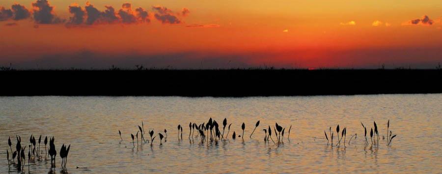 Incanto argentino - Argentina Sunset in Laguna Valle