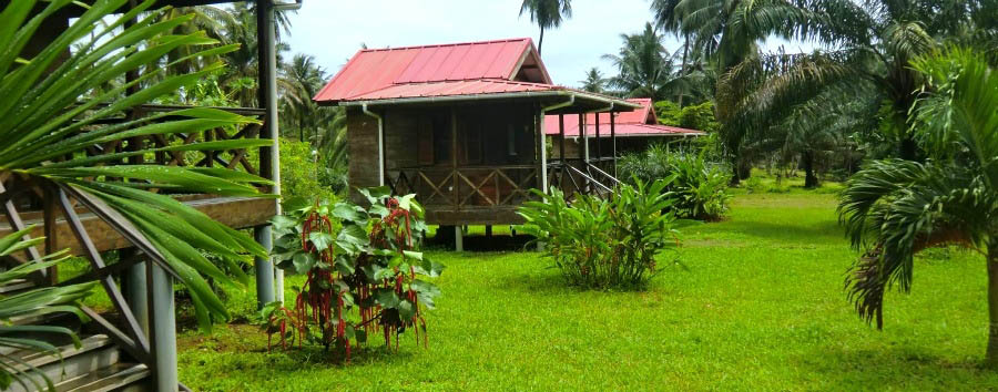 Praia Inhame Eco Lodge - Bungalows View