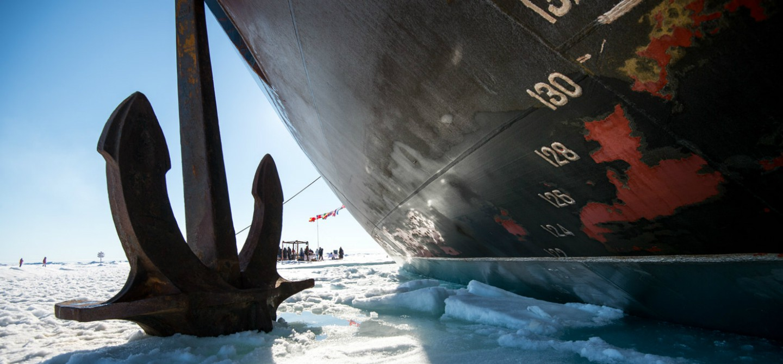 Artico: sulla cima del mondo
