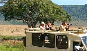 Tanzania Wildlife & Cultural Explorer