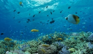 Okinawa: il Pacifico nascosto
