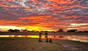 Zimbabwe: una volta nella vita