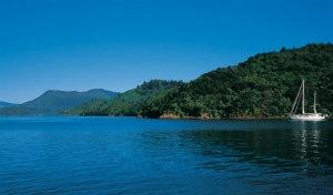 Nuova Zelanda, le stelle del nord