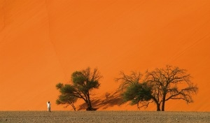 Alluring Namibia