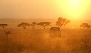Discovering Tanzania