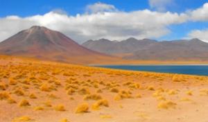 Amor Explora Atacama