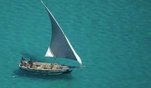 Quirimbas Island Hopping
