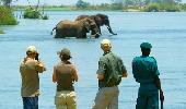Sud Malawi: safari e foreste