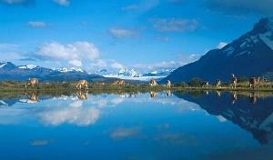 Cile, lungo la Cordigliera